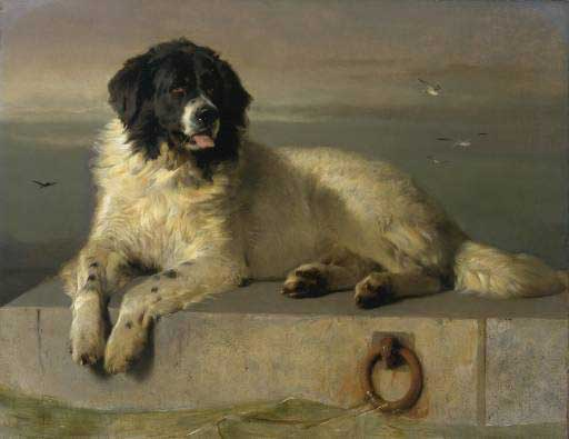 """A Distinguished Member of the Humane Society"", Sir Edwin Landseer 1831"